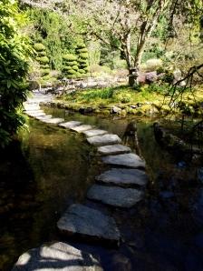 Walk and Reflect